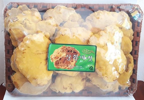 Quà tặng nấm Thượng Hoàng Hàn Quốc khay 0.5kg