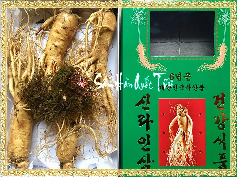 Nhân Sâm Tươi Hàn Quốc 6 Năm Tuổi – 4 củ/1kg - check giá